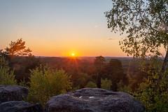 Coucher de soleil sur la forêt de Fontainebleau - Photo of Perthes
