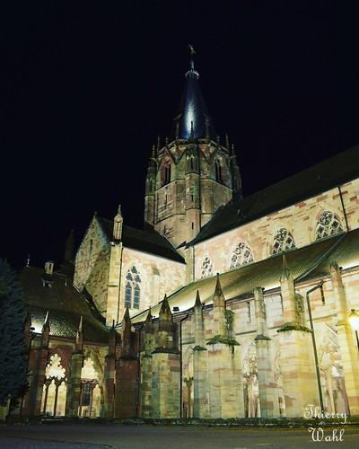 Cloître de l'abbatiale de Wissembourg