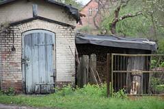 Mokrz village