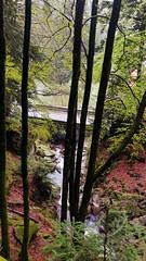 Photo Plancher-les-Mines