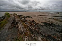 Pointe du groin du sud - Photo of Dragey-Ronthon