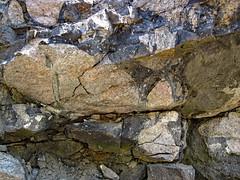 Clast-rich impact pseudotachylite (Sudbury Breccia, Paleoproterozoic, 1.85 Ga; Crab Lake South roadcut, south-southeast of Cartier, Ontario, Canada) 5