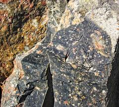 Clast-rich impact pseudotachylite (Sudbury Breccia, Paleoproterozoic, 1.85 Ga; Windy Lake Northwest roadcut, Sudbury Impact Structure, Ontario, Canada) 14