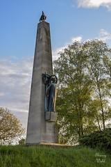 Monument commémoratif français du Geisberg - Photo of Schœnenbourg