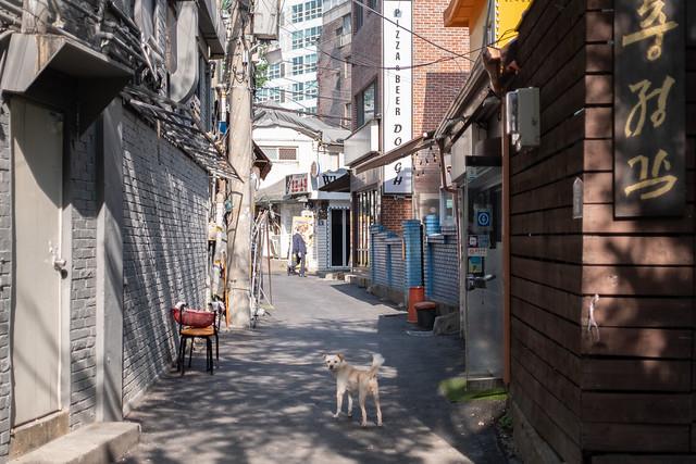 Chungjeong-no