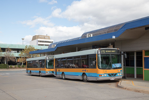 ACTION (145) and (135) Dennis Dart/Wright posed for a photo at Woden Interchange