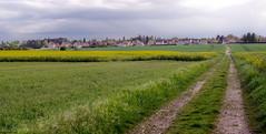 la plaine, le chemin et le village