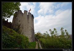 Châtillon-sur-Seine - Tour de Gissey - Vestige du château des Ducs de Bourgogne