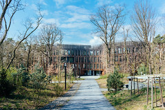 Path to a modern wooden building on campus harmonically embeded in nature