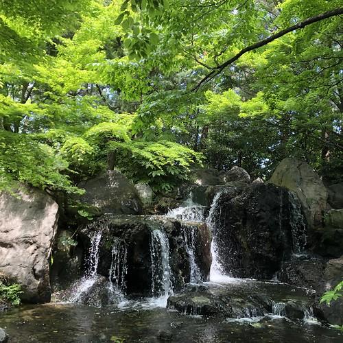 Shiratori-garden 3