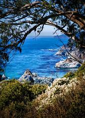 Big Sur Coast No.1