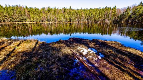 Last snow spots, Sipoonkorpi National Park, East-Helsinki ☃️🌴