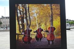20190502 03 Vannes - Port -  Nikolaj Lund - Everybody Loves Classical Music