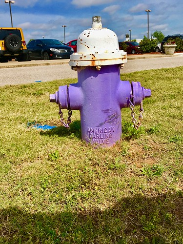 A Fire Hydrant at Dothan Regional Airport