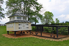 Cluckingham Palace chicken coop