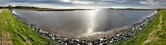 180° Panorama of the Blackwater National Wildlife Refuge Park's Shore