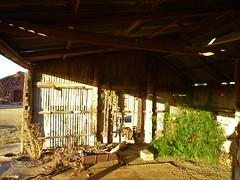Barunga Gap. The Last Stand. The only shearing stand left in the old Hummocks Station shearing shed.  Station established in 1842. Behind are the shearers quarters now used for tourist accommodation.