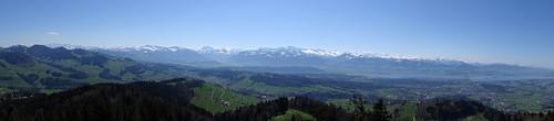 Panorama vom Bachtelturm über Züricher Oberland, Alpen und Zürichsee