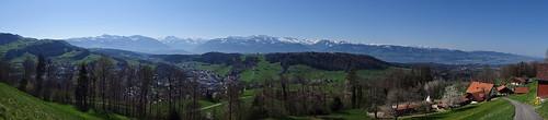 Panorama über Wald ZH, Zentralalpen und Zürichsee von Tänler (751 m.ü.M.) aus