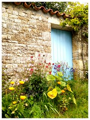 Embourie (Charente) #terraaventura - Photo of Theil-Rabier