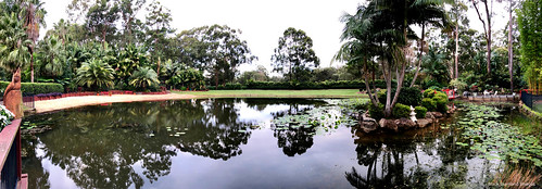 Avoch, Barnett Garden, Darawank, Mid North Coast, NSW