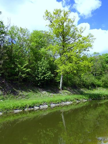le long de la Sarre de Sarrebruck à Wittring