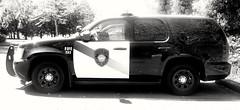 Fife Police Chevrolet Tahoe b&w