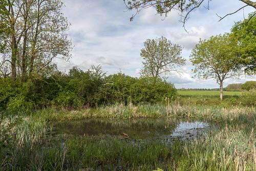 Eldrik; kolk langs Beemsterweg