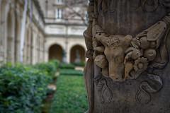 Lyon - Palais Saint PIerre - Musée des Beaux Arts