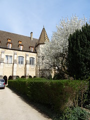 2019-04-01-200-Beaune-CollegialeNotreDame - Photo of Chorey-les-Beaune
