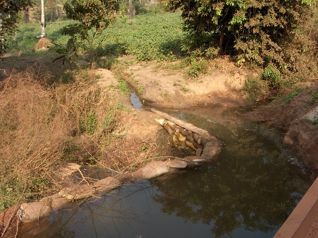 Diverting water to fields, Kindia, Guinea (1)