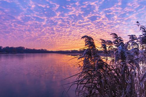 Cambridgeshire Sunrise