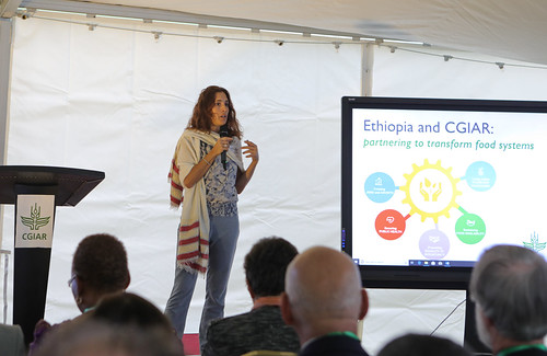 Silvia Alonso briefs what to expect from the global challenge displays