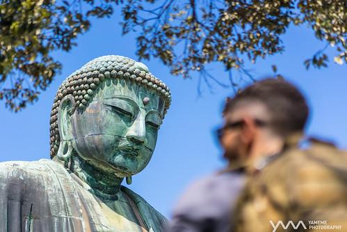 佛看人生 C'est La Vie / Kamakura, Japan