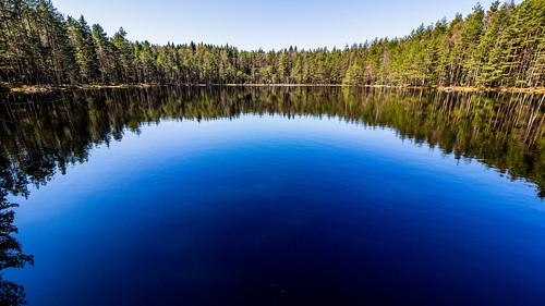 Sipoonkorpi National Park, East-Helsinki 🌴🌴
