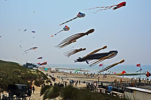 Vliegerfeest Callantsoog