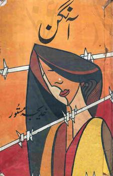 Aangan  is a very well written complex script novel which depicts normal emotions and behaviour of human like love hate greed power and fear, writen by Khadija Mastoor , Khadija Mastoor is a very famous and popular specialy among female readers
