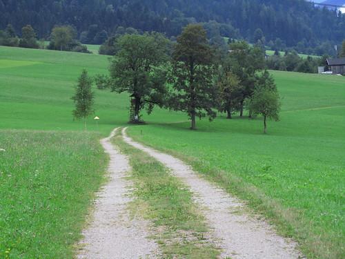 20110908 23 178 Jakobus Weg Bäume Wald Wiese