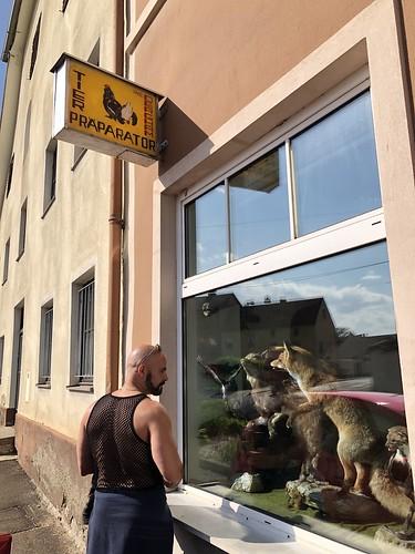 Alejandro at taxidermy shop window, Heberplatzl, Bruck an der Mur, Austria