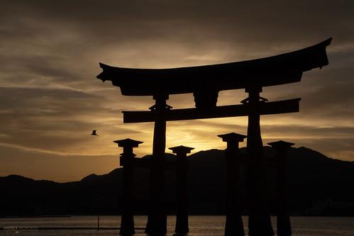 Itsukushima Floating Torii Silhouette - Miyajima Island (Japan)