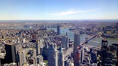 NEW YORK E I SUOI PONTI.