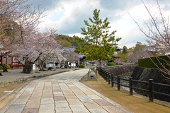 Kokawa-dera, Approach -1, (April 2019)