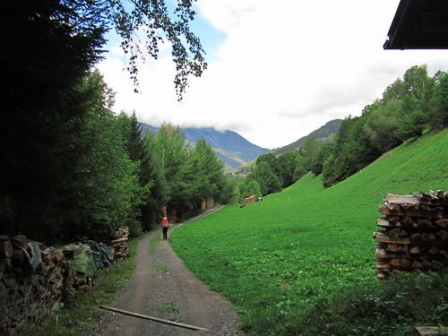 20110915 30 218 Jakobus Berge Weg Wald Holz Pilger Christine