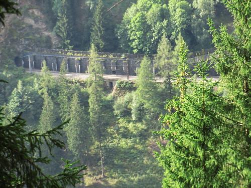 20110915 30 173 Jakobus Wald Straße Bäume