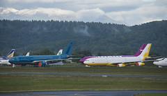 VN-A377 & V8-001