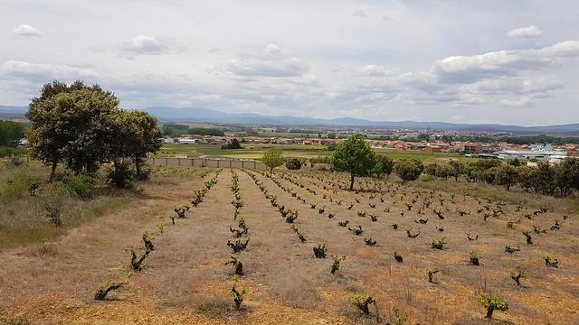 Ponferrada - Leon (Kastilien und Leon)