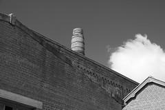 Coppenaxfort (Hauts de France) - friche industrielle de la sucrerie