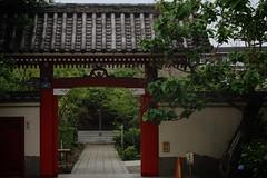 KAWASAKI city - Temple.