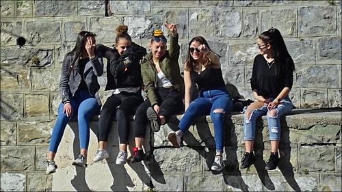 Five pretty girls on a wall