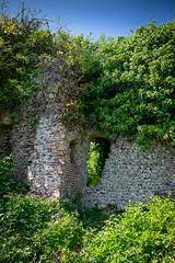 Ruines du Chateau de Longueville